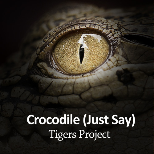 "Tigers Project - ""Crocodile (Just Say)"""