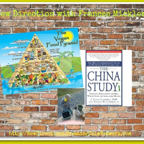 New Directions with Frances Micklem - The China Study