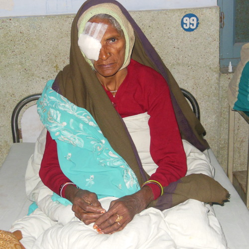 Global Activism: Blind Foundation for India