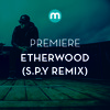 Premiere: Etherwood 'Souvenirs' (S.P.Y Remix)