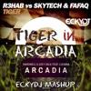 Hardwell Vs. R3hab - Tiger In Arcadia (EckyDj Mashup)