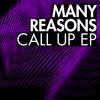 Many Reasons - Call Up - Break New Soil