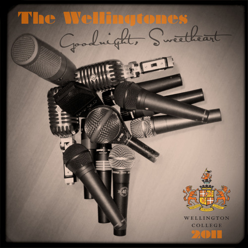 Michael Jackson Medley - The Wellingtones