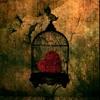 The Strokes - Heart in a Cage - Cover Portada del disco