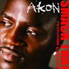 Akon - Smack That Ft. Eminem