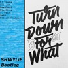 Turn Down For What [SHWYLiE Bootleg]