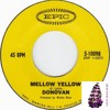 Donovan -Mellow Yellow - Yacht Rock Chuggz (Im just mad  re -fiddle)