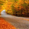 Autumn Leaves - Eva Cassidy