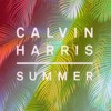 Calvin Harris - Summer (Dipcrusher Remix) $free download $