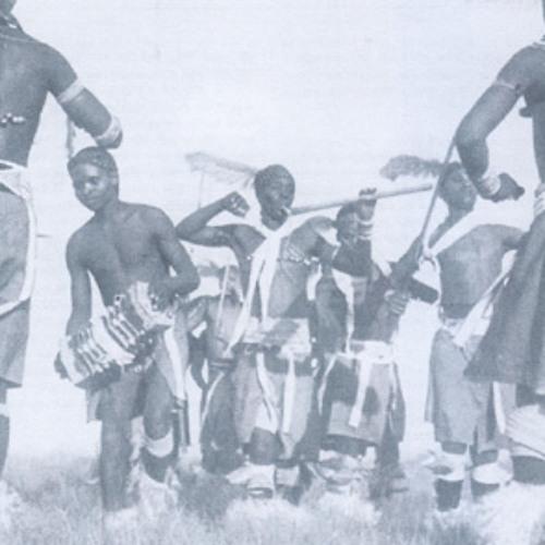ACCORDEONS EN AFRIQUE