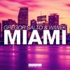 Gregor Salto & Wiwek - Miami (Original Mix)