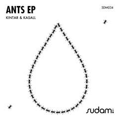 Kintar, Kasall - Ants (Original Mix)// Sudam Recordings