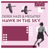 Musik? Das kann ich. FD#007 by Derek Haze & megatief - Hawk in the sky (FREE DOWNLOAD)