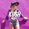 Kid Cudi - Day N Night (Sterling Flow Remix)
