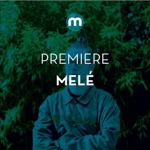 Premiere: Melé 'Ambience'