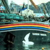 Rainbow Warrior: 30 Years Later, Will France Ever Apologize For Fatal Bombing of Greenpeace Ship?