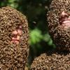 Wingman's Bees