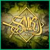 Inevitable  WHITE LION & LA SMK BAND(LIVE RADIO)