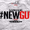 Sarkodie ft Ace Hood - New Guy