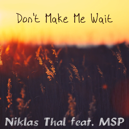 Niklas Thal feat. MSP - Don't Make Me Wait (Original Mix)