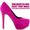Tomer Maizner Feat. Nikka - Sissy That walk  (Extended Mix)