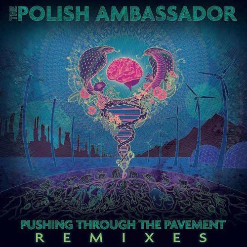 The Polish Ambassador - Let The Rhythm Just ft. Mr. Lif and Ayla Nereo (eO & Kyrstyn Pixton Remix)