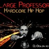 Large Professor - Hardcore Hip Hop (Dj Odilon remix instrumental)