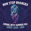 NSB - SPRING INTO SUMMER MIX - 2015 (DJ JIMMY LOVE)