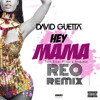 David Guetta Feat Nicki Minaj & Afrojack |Hey Mama | REO REMIX [FREE DOWNLOAD]