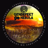Gendefekt & Nebula - Burning Down The House (Free Download)