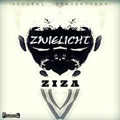 Ziza - Irgendwann macht alles Sinn (prod. by D-Stylez) // ZWIELICHT EP