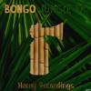Bongo - Temple Run