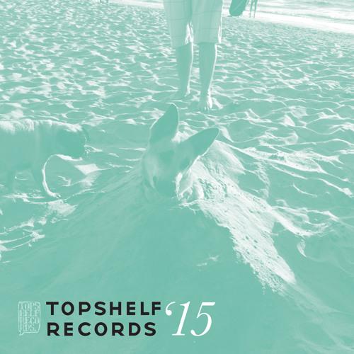 Topshelf Records 2015 highlights