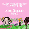 Shaggy Ft. Ricardo Ducent - It Wasn't Me (Argüello Remix)