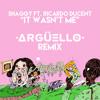 Download Shaggy Ft. Ricardo Ducent - It Wasn't Me (Argüello Remix)
