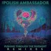 The Polish Ambassador - Let The Rhythm Just ft. Mr. Lif & Ayla Nereo (Mr. Rogers Remix)