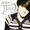 I Know - Drake Bell  (YouTube Version Cover)