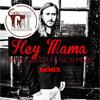David Guetta - Hey Mama (ECF Back To The Oldskool Remix)