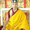 21 Praises To Tara/Chanted By 17 Gyalwa Karmapa Ogyen Trinley Dorje