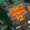 Double Dragon 3 - With An Eye Of A Tiger