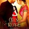 Teray Bina Jeena Nahi From Bin Roye