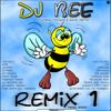 DJ Bokkie - Remix 2000 mp3