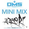 DMS MINI MIX WEEK #172 DJ STEVE R