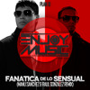 Plan B - Fanatica Sensual (Manu Sanchez & Raul Gonzalez Remix)