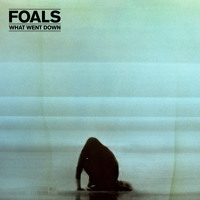 Foals What Went Down Artwork