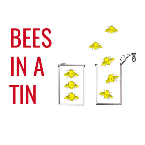 Audio from presentations at Bees in a Tin 2015