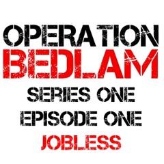 Series 1 Episode 1 - Jobless