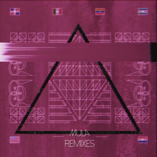 Playa (Borchi Remix)