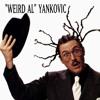 Weird Al Yankovic - I Remember Larry (Hidden Message)