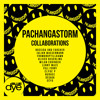 PachangaStorm - Collaborations [Album] TRACKLIST PREVIEW | Out Now !